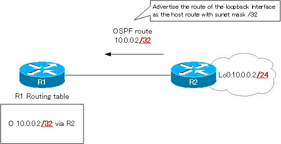 Figure The route of the loopback interface is the host route.
