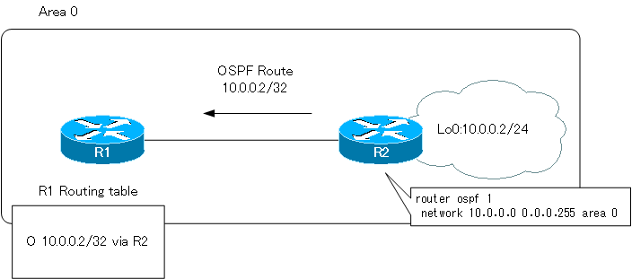 Figure The route of the loopback interface is the host route