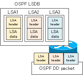 Figure OSPF DD packet overview