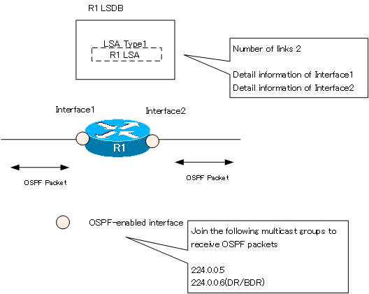 Figure Behavior when OSPF is enabled on the interface